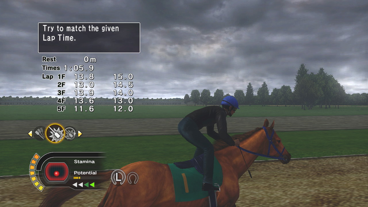 Champion-Jockey-Breeding-007
