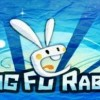 Kung Fu Rabbit Wii U Review
