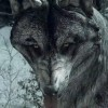 Call of Duty: Ghosts Wolf Skin DLC Released Today
