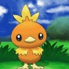 Pokemon X and Y – Torchic Event Set To End On The 15th
