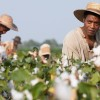 Academy Award Winning 12 Years a Slave on Home Media June 4