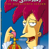 The Simpsons Season 17 Review