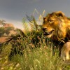 Cabela's African Adventures Now Available on Xbox One & PS4