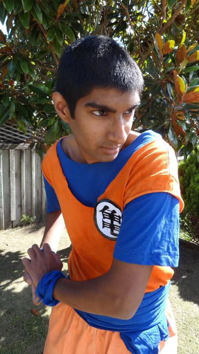 Sanjay Purbha