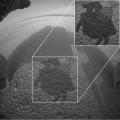 Mars_Curiosity_Photograph