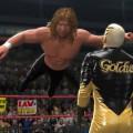 WWE-13-Brian Pillman 1