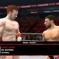 WWE-Universe-Branching 1