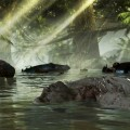 dead-island-riptide-screenshot-004