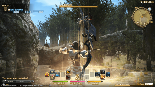 Final Fantasy XIV: A Realm Reborn alpha footage of the 'Black Shroud' released