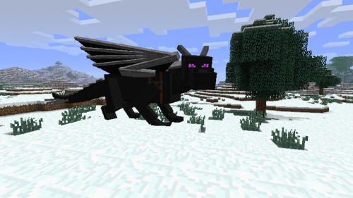 Minecraft XBLA Update 8 includes the Ender Dragon