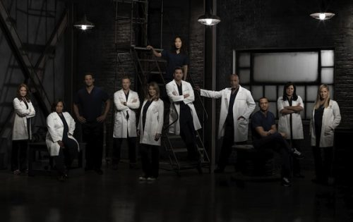 CC Screen: Grey's Anatomy Season 9 Wrap-Up