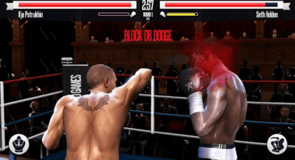 Real-Boxing-Screenshot-1.0