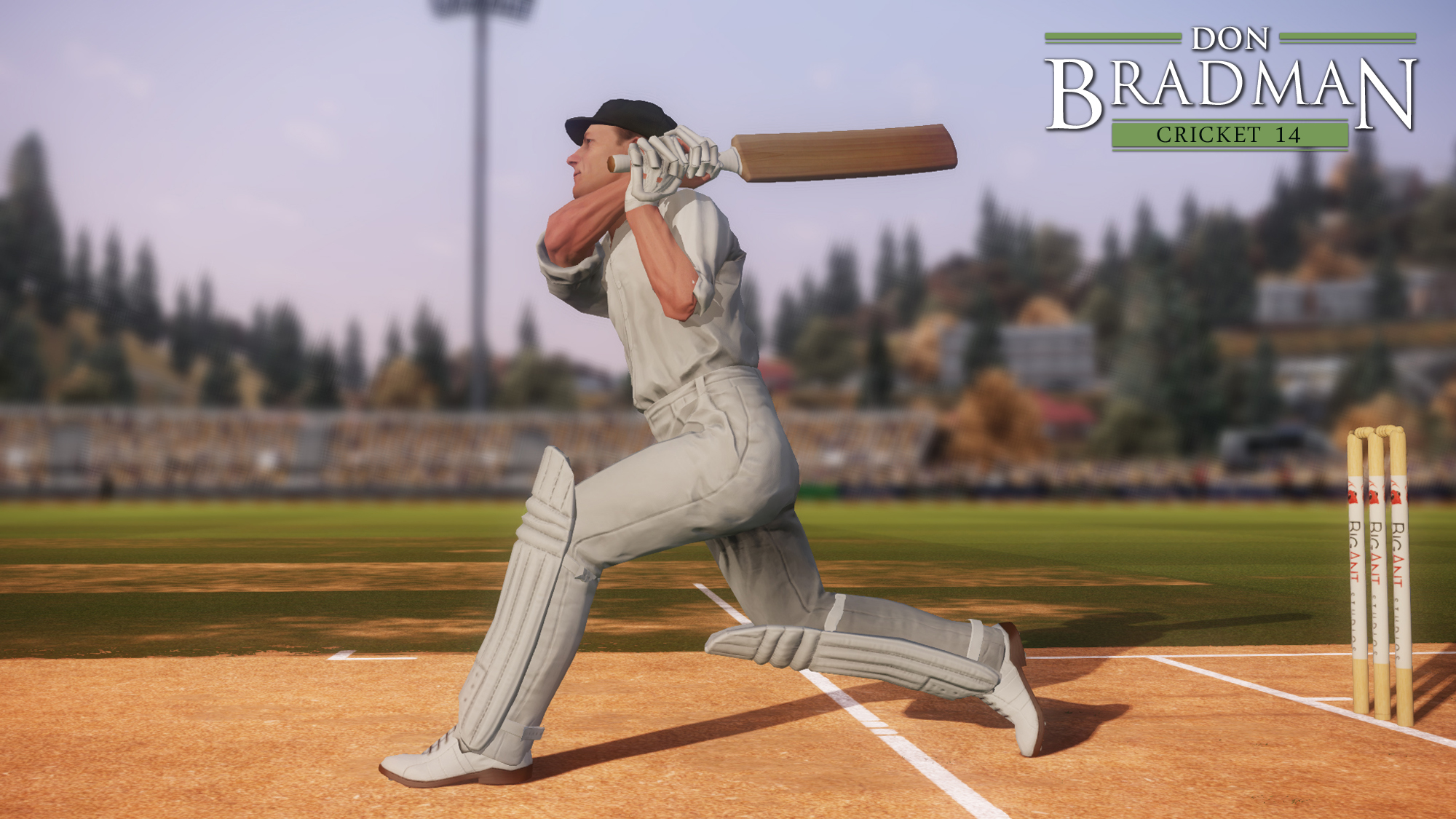 Don-Bradman-Cricket-14-01