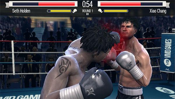 real-boxing-vita-07