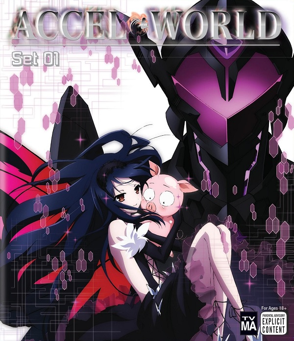 accel-world-set-1-box-art