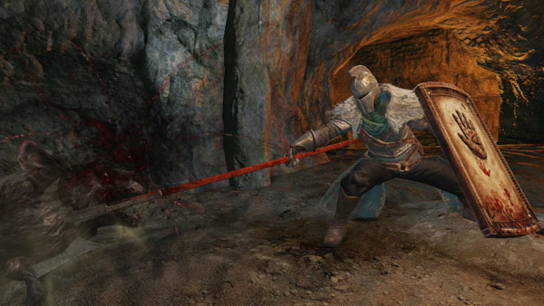 dark-souls-ii-shield-screenshot-02