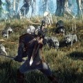 The-Witcher-3-Wild-Hunt-Screen-02