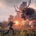 The-Witcher-3-Wild-Hunt-Screen-03