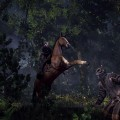 The-Witcher-3-Wild-Hunt-Screen-04