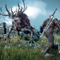 The-Witcher-3-Wild-Hunt-Screen-20