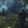 The-Witcher-3-Wild-Hunt-Screen-24