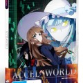 Accel World: Part 2/2 Review