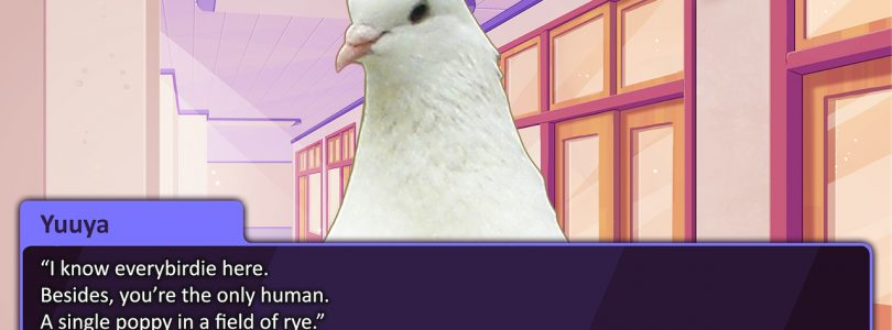 Japanese Pigeon Dating Sim Hatoful Boyfriend Being Remade