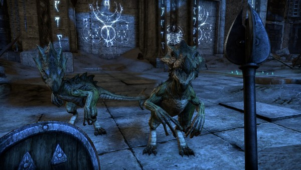 the-elder-scrolls-online-screenshot-63