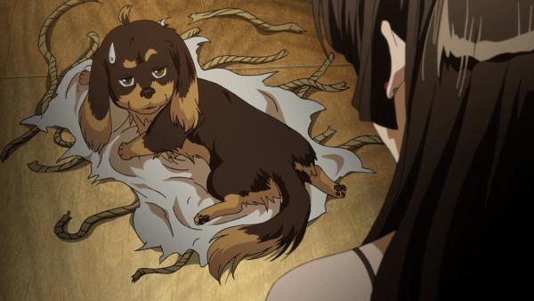dog-and-scissors-screenshot- (2)