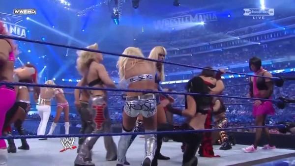 wrestlemania-25-divas-battle-royal-02