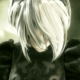 New NieR Title in Development for PlayStation 4