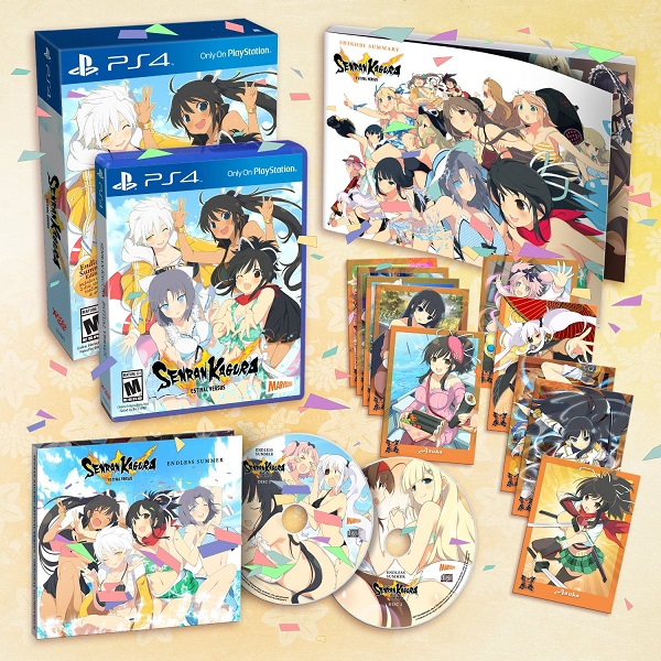 Senran-Kagura-Estival-Versus-endless-summer-edition