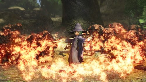 Beserk Game Adds Schierke and Sepico as Playable Characters