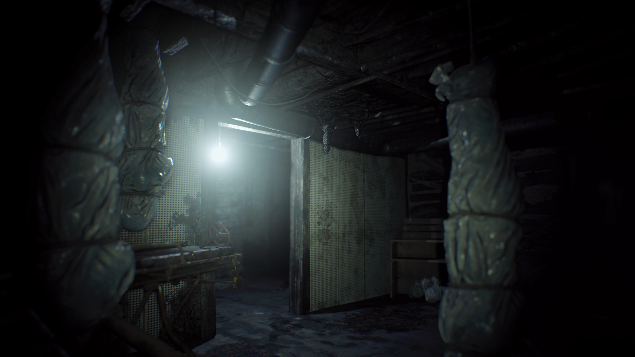 resident-evil-7-biohazard-screenshot-018