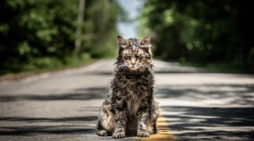 New Trailer & Poster Released For Pet Sematary