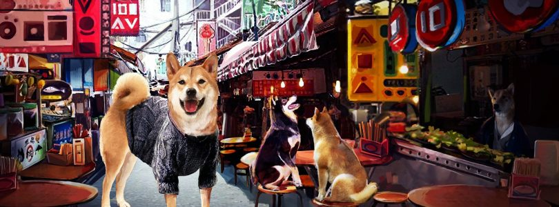 Solve A Bark Mystery In A Summer with the Shiba Inu