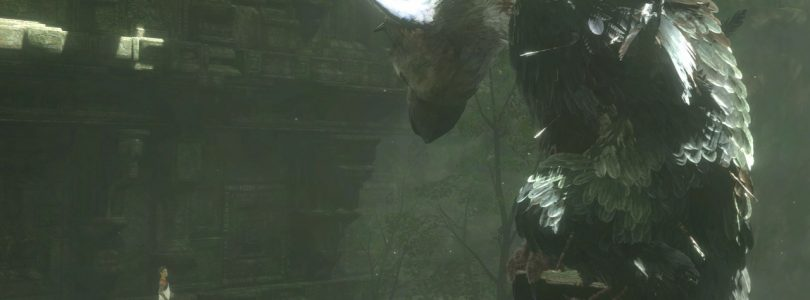 The Last Guardian Introduction Video