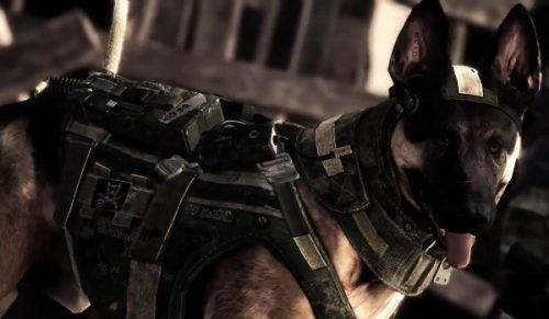 Call of Duty: Ghosts' gameplay to be revealed at pre-E3 event