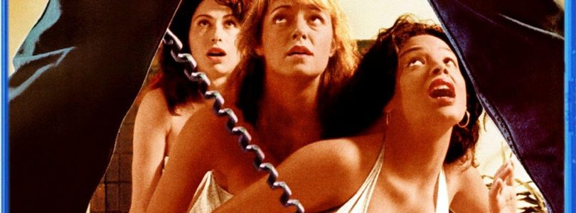 The Slumber Party Massacre Due Out in March from Scream Factory