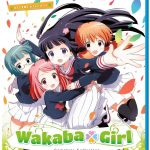 Wakaba Girl Complete Collection Review