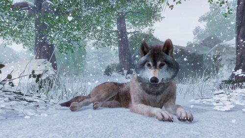 Planet Zoo Announced for PC