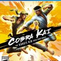 Cobra Kai: The Karate Kid Saga Continues Review